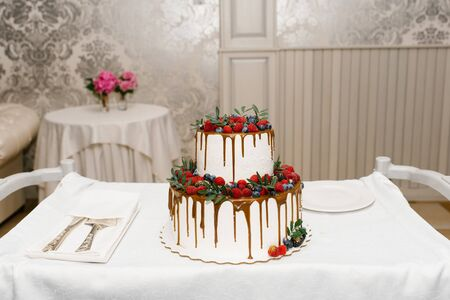 A beautiful two-tiered wedding cake with streaks of chocolate and berries on it