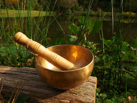 Singing bowl set on a wooden log on the edge of a lake