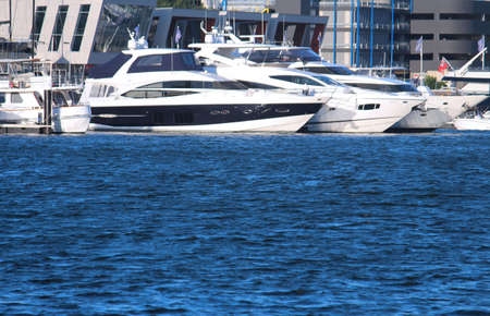 Motor cruising yachts docked at a marina water in the foreground. Sydney Superyacht Marina. Rozelle
