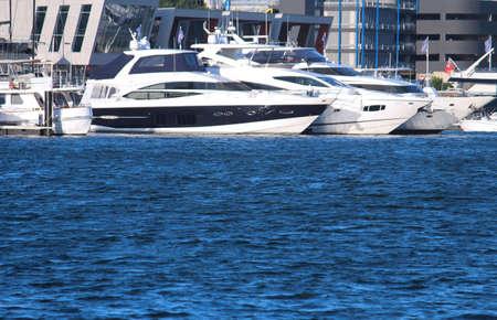 Motor cruising yachts docked at a marina water in the foreground. Sydney Superyacht Marina. Rozelle