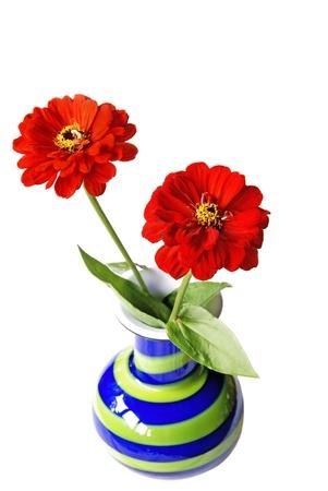 Zinnias in retro style vase