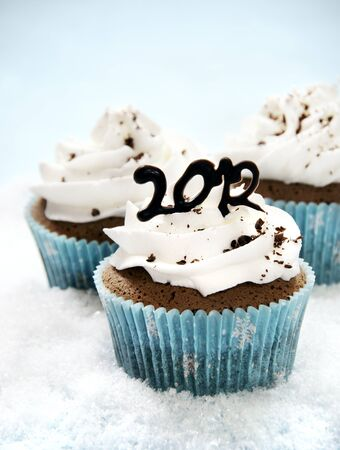 Wintery cupcakes to celebrate the New Year 2012 Stock Photo - 10881905