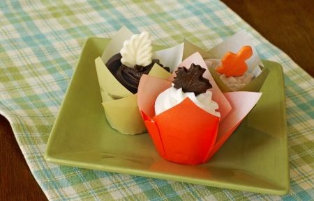 Vanilla cupcakes with vanilla, chocolate, and mocha frosting, decorated with chocolate leaves Imagens - 14970733