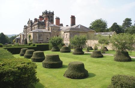topiary: garden.  yew topiary trees garden