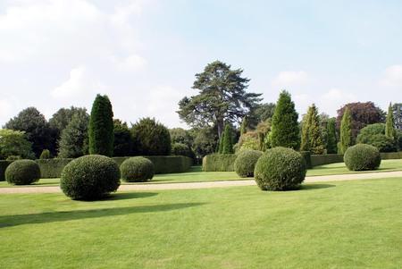 topiary: yew topiary garden scene