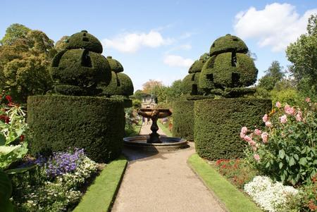 garden fountain: Fountain in a topiary garden