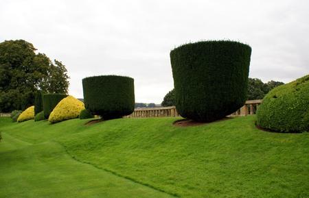 topiary: Topiary trees. Sudeley Castle Garden, England Editorial