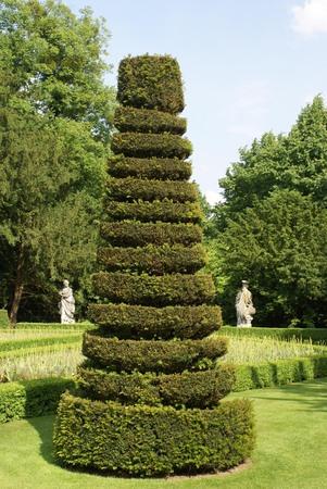 topiary: topiary tree Stock Photo