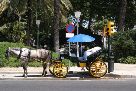 horse and carriage: Horse carriage, Seville, Andalusia, Spain
