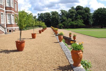 plant pots: garden plant pots
