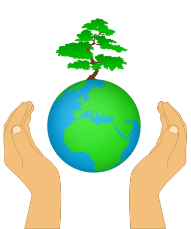 Hands holding the earth and tree on a background Stock Vector - 16298294