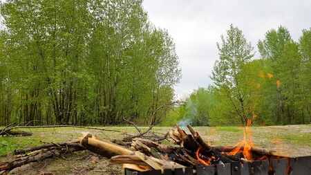 Beautiful red fire from wood. Flames fires preparation for cooking barbecue. Brazier on nature bbq.