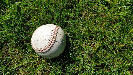 Weißer alter Baseballball auf frischem grünem Gras mit Kopienraumnahaufnahme. Amerikanisches Sportbaseballspiel