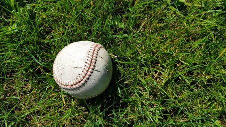 White old baseball ball on fresh green grass with copy space closeup. American sports baseball game