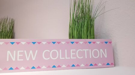 Close-up of a new pink collection plate on a shelf with green flowers on a light wall background with copy space. A new collection of women's clothing Standard-Bild - 131310547