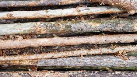 Firewood on big pile , top view, beautiful wooden logs. background of stacked logs top view from the drone. pile stacked natural sawn wooden logs background.