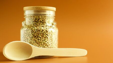 Green sprouts of raw organic buckwheat in a glass cereal jar with a wooden spoon. Vegan food concept. Organic food. The concept of diet, weight loss, healthy and proper nutrition. Copy space for text