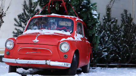 Red small retro car Zaporozhets with a Christmas tree fir tied to the roof. Fresh cut natural spruce for Christmas holiday decoration, family celebration symbol. Ukraine, Kiev - January 16, 2021