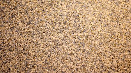 silk plaster texture or liquid wallpaper, abstract background. Stucco surface texture closeup.