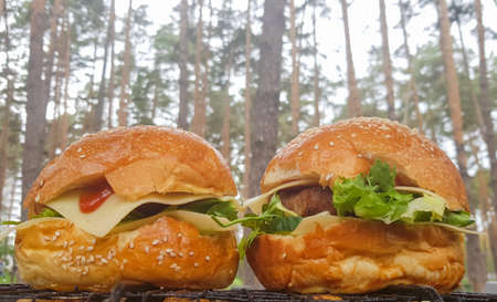 Close-up of two large DIY hamburgers in the park on a barbecue, rest and cooking on a picnic in the summer, food, delicious, bright colors. Unhealthy food concept. Fast food. Flat lay Stockfoto