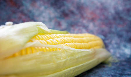 Lying head of sweet corn. One ear of corn with leaves. Raw corn head close-up on the table. Natural color Stockfoto