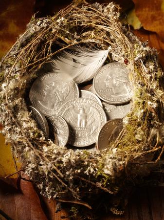 nido de pajaros: Nido de p�jaro lleno de moneda estadounidense y las hojas de oto�o concepto nido de huevos Foto de archivo