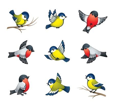 Pretty winter birds: tits and bullfinches Stock Photo