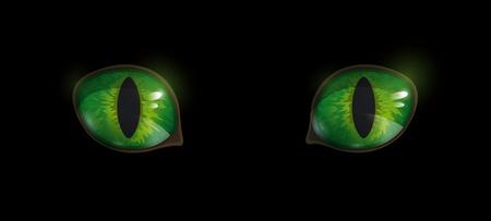 eyes: Groene glossy kat