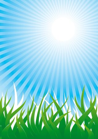 Background with lush green grass and sun beams in blue sky Stock Vector - 10928173
