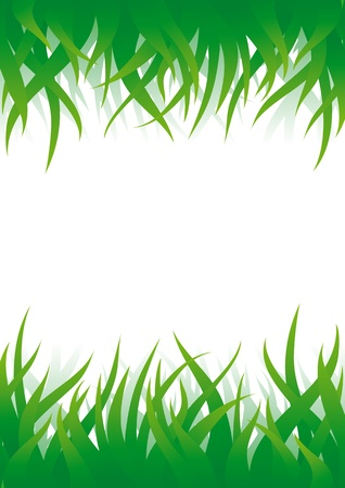 sedge: Vector background with green grass on top and bottom sides and place for text in center. Illustration