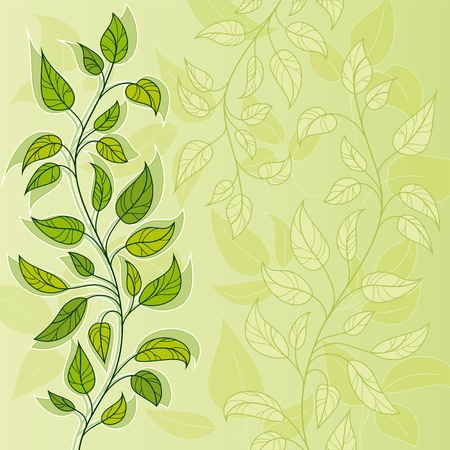 Vector green background with leavy branch Çizim