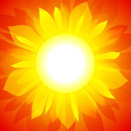 Sunflower on red background.  Vector