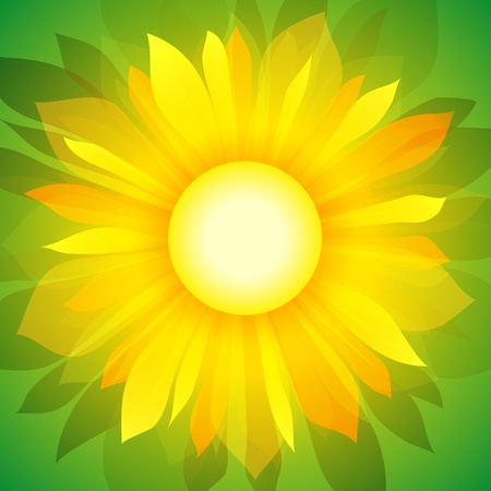 backdrop: Sunflower on green background. Illustration