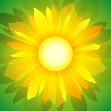Zonnebloem op groene achtergrond. Stock Illustratie