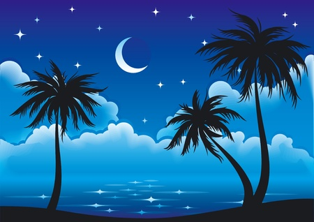 Night coast with palm-trees.  Vector