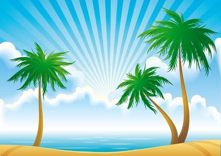 'S Ochtends kust met palmbomen.