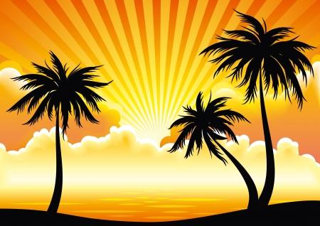 Puesta de sol costa con palmeras. Vectores