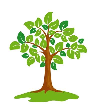 boom wortels: Gestileerde groene boom. Stock Illustratie