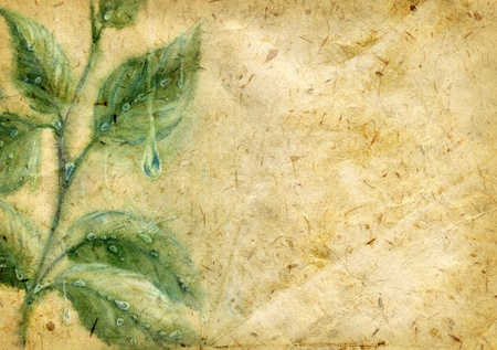 Old textured crumpled paper with leaves and water drops drawn with watercolors and pencils photo