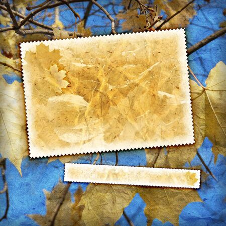 Vintage autumn background with canvas texture photo