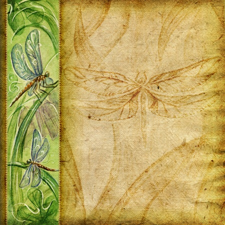 photoalbum: Textured background with natural painted dragonflies Stock Photo