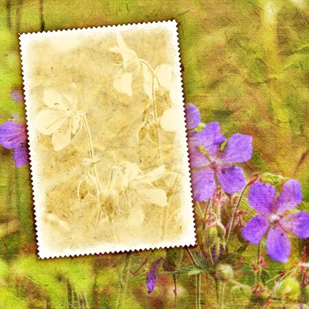 Vintage summer flowers background with canvas texture Stock Photo - 10966253