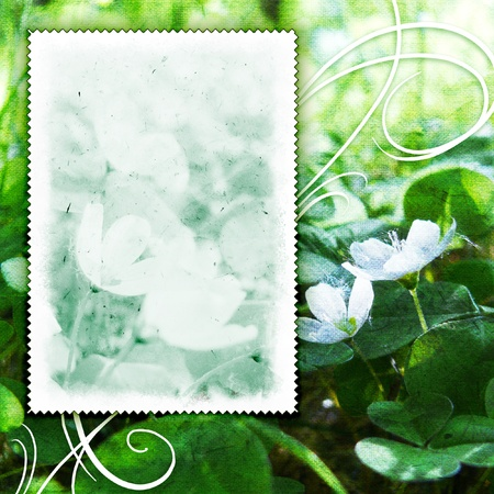 place card: Vintage flowers background with canvas texture