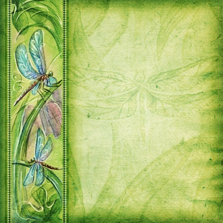 photoalbum: Textured background with dragonflies