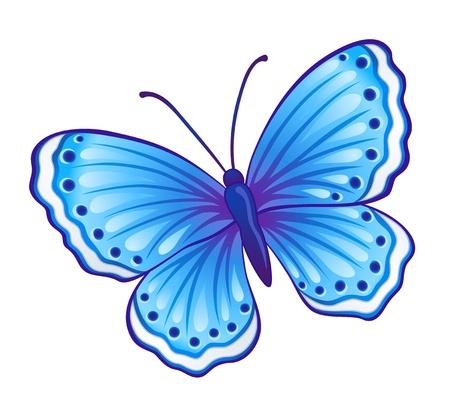 mariposa azul: Vector mariposa azul (Polyommatus icarus) con las alas abiertas Vectores