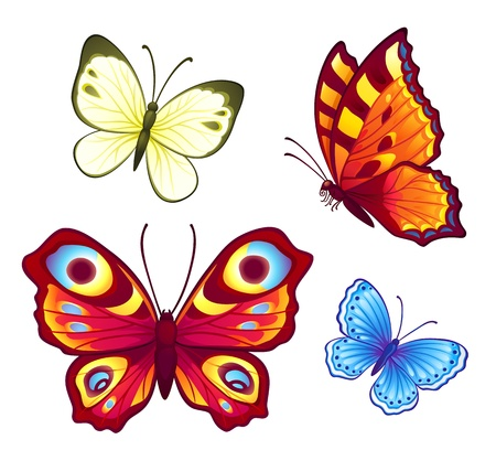 pieridae: Set of 4 bright vector butterflies Illustration