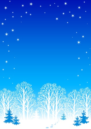 Winter night background Stock Vector - 11307029