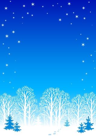 Winter night background Vector
