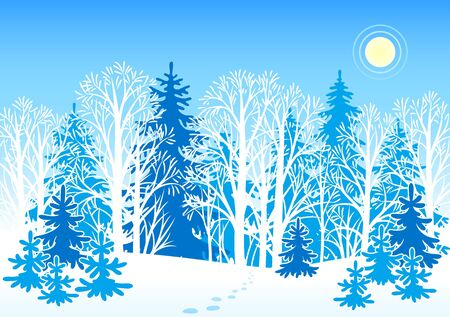 Winter forest landscape Vector
