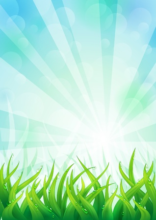 Light natural background with lush green grass. Stock Vector - 18157426